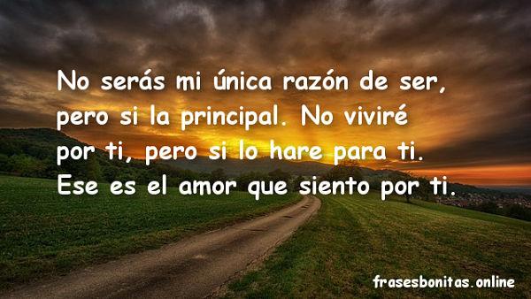 Frases De Amor Para El 2019 Bonitas Y Originales